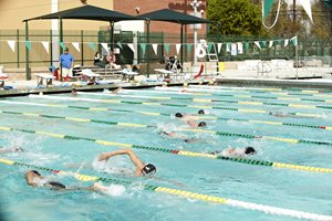 Swimmers Practicing in Pool