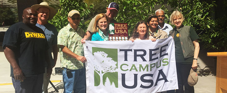LAVC Tree Campus USA Celebration photo